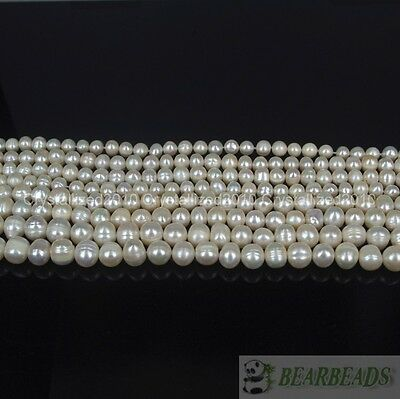 """Natural Freshwater White Pearl Round Beads 4mm 6mm 8mm 9mm 10mm 11mm 12mm 15"""""""