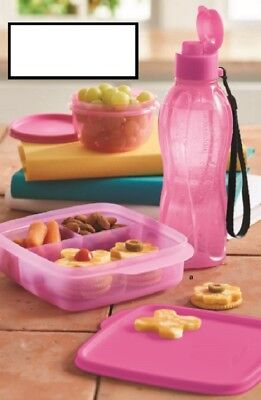 Tupperware Perfectly Pink Lunch Set Water Bottle Lunch-It Ideal Lit'l Bowl *NEW*