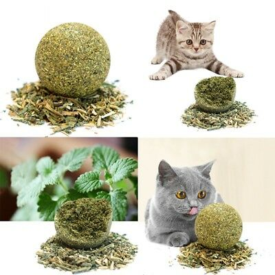 1/10X Nature Cat Mint Ball Play Toys Ball Coated With Catnip & Bell Toy For Pet