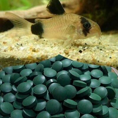 SPIRULINA Tablets Enrichment Favorite Food for Fish and Crystal Red Shrimp