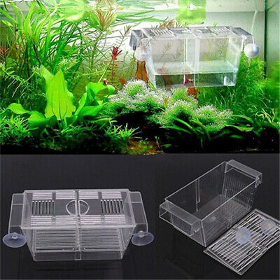Aquarium Fish Tank Guppy Double Breeding Breeder Rearing Trap Box Hatchery  Soft