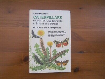 Field Guide to the Caterpillars of Britain and Europe by David Carter (Hardback,