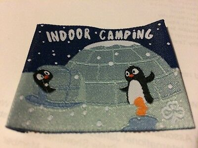 Girl Guides / Scouts Indoor Camping