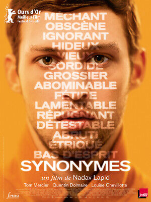 SYNONYMES - Affiche cinema 40X60 - 120x160 Movie Poster