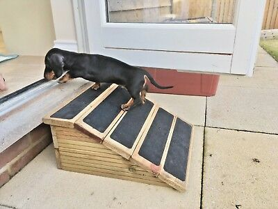 18cm High- Short Base Pet Ramp