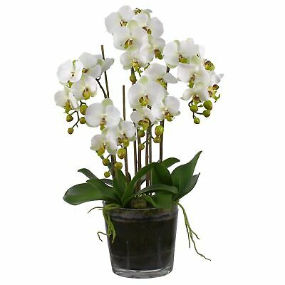 NEW 6 Stem Faux Orchids Set with Tapered Pot