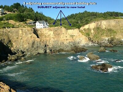 *NEW LOW PRICE* CA Black Sand Beach 1/2 Acre Comm.Zoned + $1,100,000 LAND VALUE!