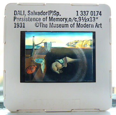 """SALVADOR DALI  /""""THE FLYING CAT/"""" SURREAL ARTIST WILD REAL PHOTO ABSTRACT ART ICON"""