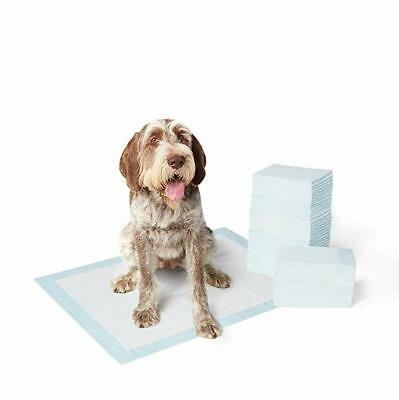 60 Count AmazonBasics Pet Training and Puppy Pads - X-LARGE