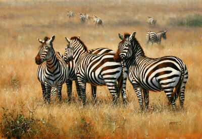 Modern HD Print Painting on Canvas Wall Art Animal Zebra Wall Picture Home Decor