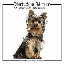 Yorkshire Terrier Studio Calendar 2016 by Avonsi... | Book | condition very good