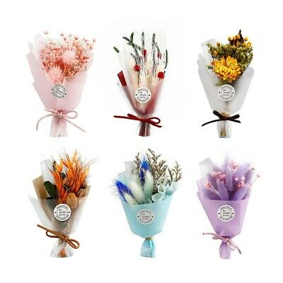 1 Bouquet Mini Babysbreath Flowers Natural Dried Flower Wedding Party Decor Gift