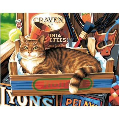 PAINTWORKS Paint by Number Kit CAT SIGNS 14 x 11 inches Dimensions