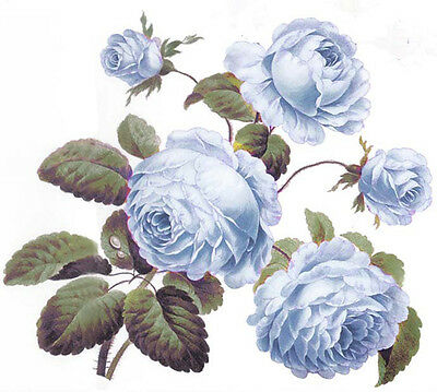VinTaGe IMaGe BesT ShaBby BLuE CaBbaGe RoSeS WaTerSLiDe DeCALs