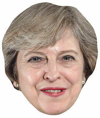 Theresa May Single 2D Card Party Face Mask - Prime Minister