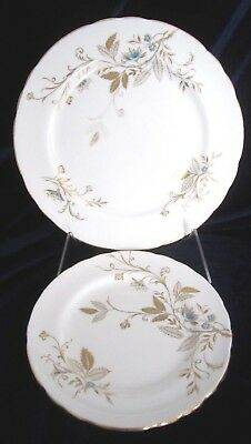 Aynsley Celeste Bone China Salad Plate & Bread & Butter Plate - #8354 - England