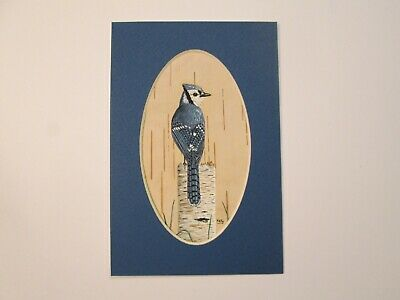 """Bluejay hand painted on Birch Bark - matted - 4"""" x 6"""" - by Ann Kelly"""