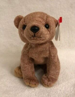 TY Beanie Babies Brown Bear ** PECAN ** 5th Generation New w// Tag