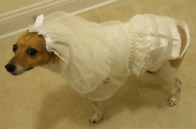 Dog Pet Bridal Gown Dress w Veil Lace Pearl Ruffled Special Occasion Halloween