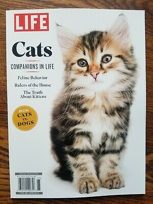 LIFE ~ CATS ~ COMPANIONS IN LIFE ~ PLUS: CATS vs. DOGS