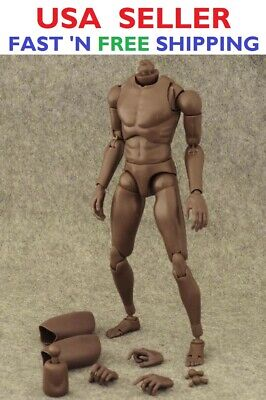 ZY TOYS 1/6 Narrow Shoulder African American Male Body for TTM18 TTM19