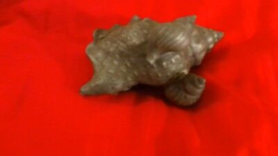 Exquisite Highly Unusual And Very Rare Pewter Sea Shell And Two Snails