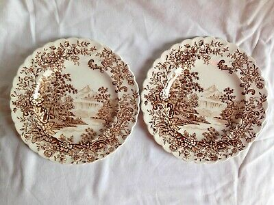 Peaceful Summer Brown English Victorian Transferware Serving Platter Decorative