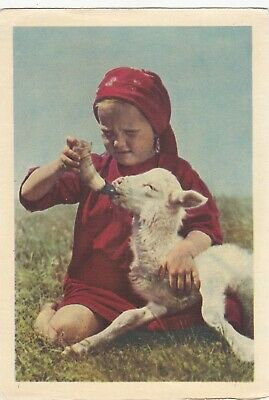 1954 Cute little girl feeding goat lamb photo old Russian Soviet postcard