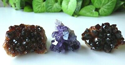 Citrine and Amethyst Clusters 3 pieces Abundance & Protection Healing ACGC030