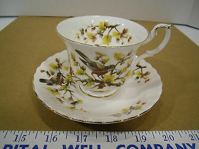 Royal Albert English Bone China Woodland Series Robin Tea Cup & Saucer Set - EUC