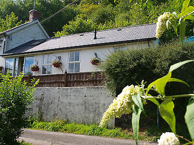 AUGUST 24th-31st  HOLIDAY Cottage West Wales Walking Beach £320wk Dog Friendly