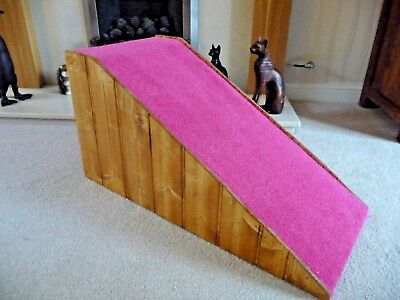 32 cm High Pet Ramp in Shocking Pink