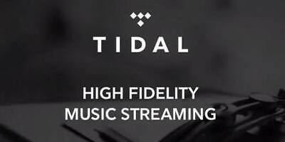 TIDAL Hi-Fi FAMILY Plan  6 Users 3 Months INSTANT DELIVERY