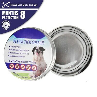 Adjustable Anti Flea and Tick Neck Collar  Protection For Pet Dog Cat 8 Months