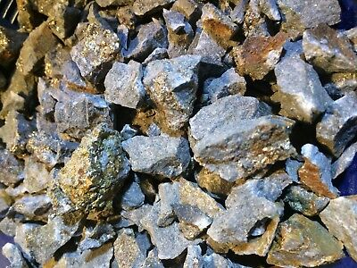 Rich Unsearched Pay dirt Concentrate w/placer Gold+Silver/Gold Ore 1/2 lb bag
