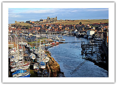 Greetings Card Birthday / Blank Notelet - Whitby Abbey Yorkshire Holiday Coast
