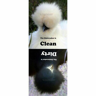 Clean Dirty Dishwasher Magnet - Silkie Chicken Poofy Hair Funny Hen