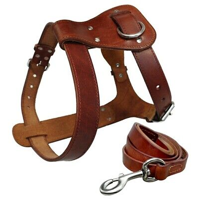 C-00-L Hilason Tan Padded Genuine Leather Large Guide Dog Harness With Handle