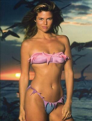 A Kristie Brinkley In Bikini On The Beach At Sunset 8x10 Picture Celebrity Print