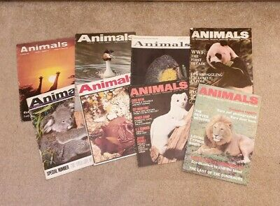 8 Animals International Wildlife Magazines 64-72 Various Volumes & Issues Bundle