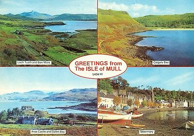 Isle of Mull used postcard Aros 1984