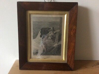 Antique Georgian Rosewood Picture Frame