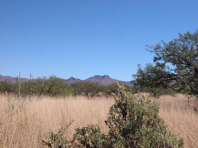 .17 Acres +/- Off Grid Southern Arizona Property