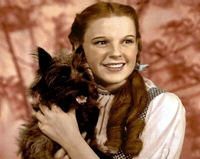 """JUDY GARLAND THE WIZARD OF OZ DOROTHY TOTO 8x10"""" HAND COLOR TINTED PHOTOGRAPH"""