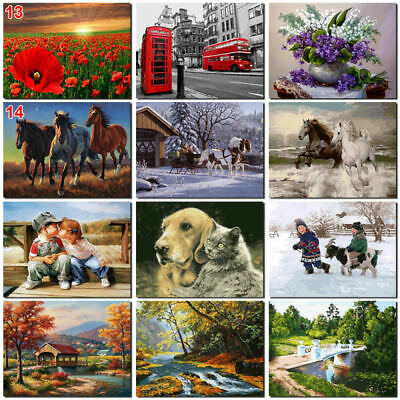 DIY Animal Scenery Paint By Number Kit Digital Oil Painting Art Wall Home VTM