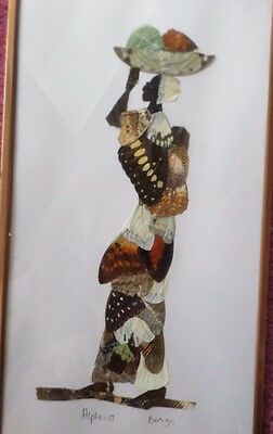 "Vintage - Real Butterfly art - African - 7"" x 12"" framed Set (2)"