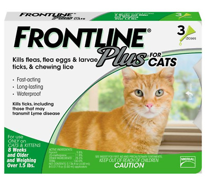 Frontline Plus For Cats 8 Month Treatment Kills Flea Eggs Tick Lice Over 3Cts