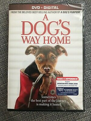 A Dog's Way Home Brand New DVD + Digital