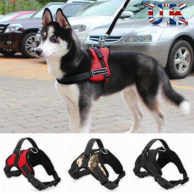 No-pull Dog Harness Outdoor Adventure Pet Vest Padded Handle Extra Large