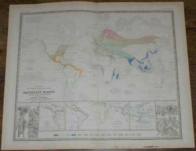 Map: 1848 Map of Geographical Distribution & Cultivation of Food Plants